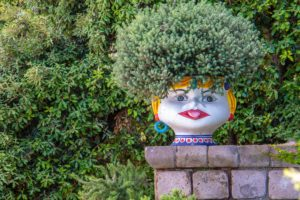 Evergreen in Planter by Nick-Fewings